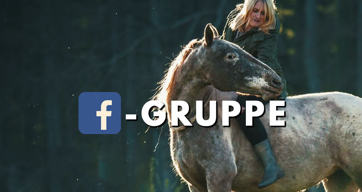 Tierkommunikation Ann-Christin Pabst - Facbook Gruppe